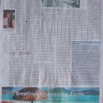 Sunday Star-Times 29th August 2010 page C3